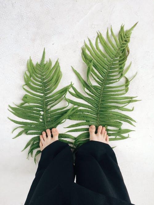 Best Detox for Feet